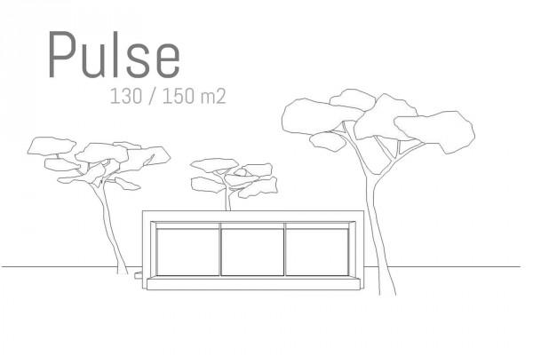 STD02-PULSE