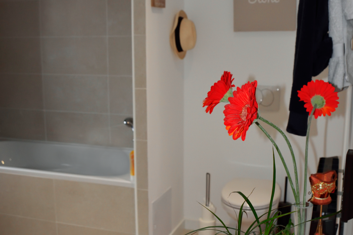 bathroom in cubic wooden house in Hérault